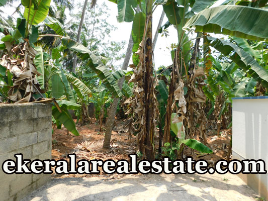land plot for sale at Mangattukadavu Thirumala Trivandrum Thirumala real estate kerala