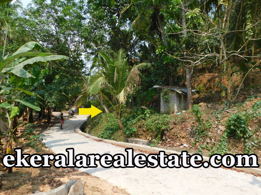 Plots For Sale at Kollamkonam Peyad Trivandrum Price Below 2.5 Lakhs Per Cent