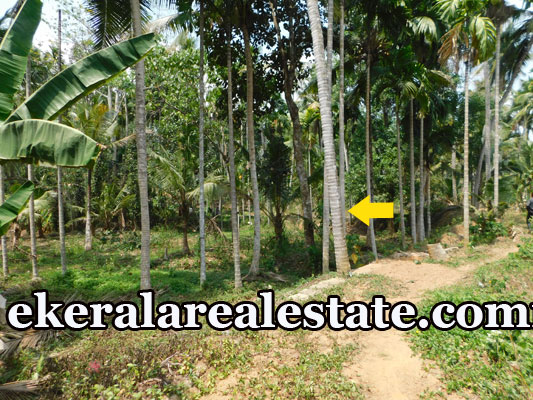 Land Sale at Karakulam Mullasery Enikkara Peroorkada Trivandrum real estate
