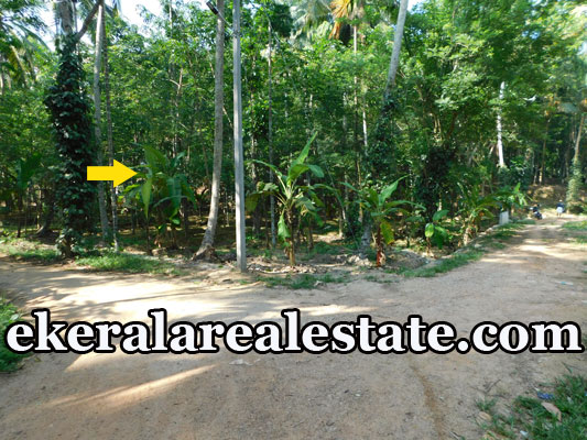 residential land for sale at Neyyar Dam Kallikkad Kattakada Trivandrum real estate kerala