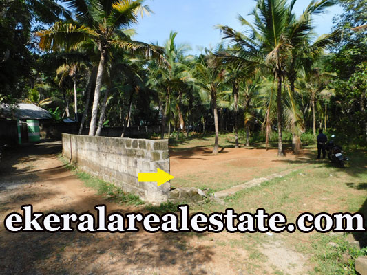 30 Cent land plot for sale at Thozhukkal Neyyattinkara Trivandrum real estate kerala