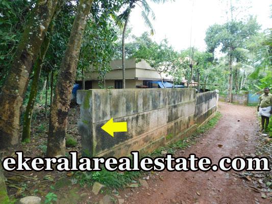 30 cents low price land plot sale at Puliyarakonam