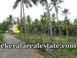 Cheap rate house plot sale at Balaramapuram
