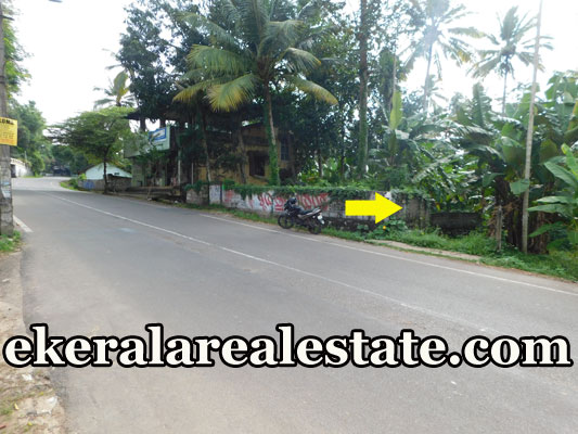 Cheap rate land sale in Sreekariyam