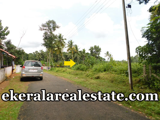 Tar Road frontage land sale in  Poovachal