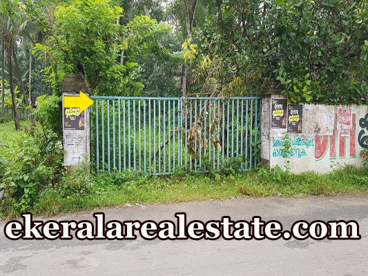 Tar road frontage plot sale in  Vallikavu