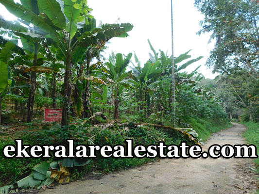 Vithura  88 cents lorry plot sale in Trivandrum