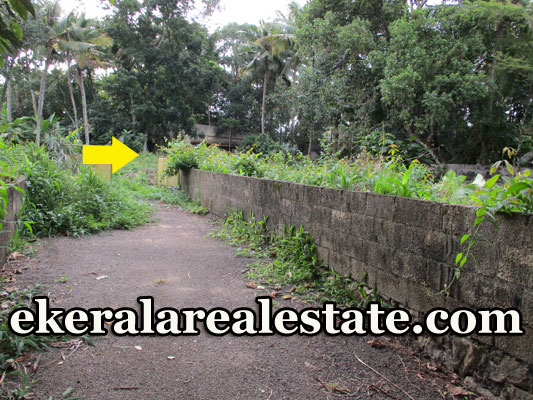 13 cents land  plot for sale in Kudappanakunnu