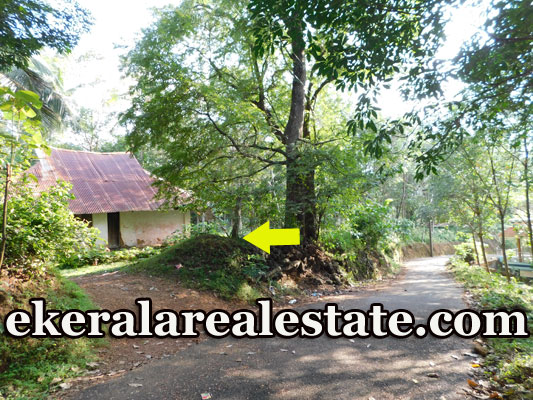 Aruvikkara Trivandrum low price plot for sale