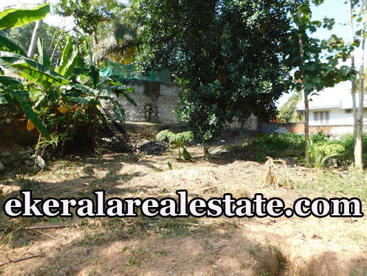 6-lakhs-per-cent-land-sale-in-Sreekariyam