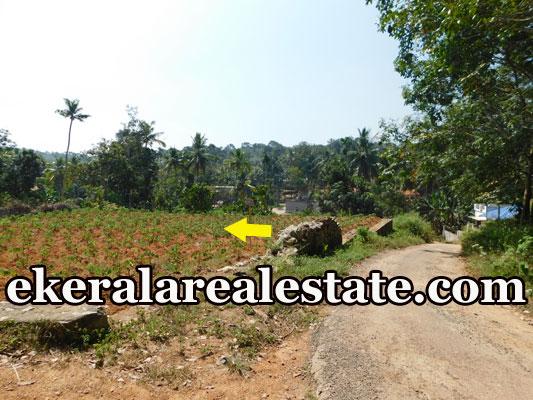 urgent-sale-12-cents-land-plot-sale-Near-Pothencode