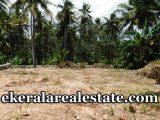 5-cents-land-sale-near-Technocity-Trivandrum