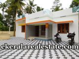 Nedumangad-10-cents-land-and-new-house-for-sale