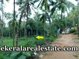 Low-budget-89-cents-land-sale-in-Vilappilsala