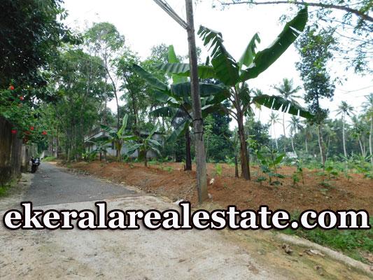 Low budget house plot sale in Kattakada Trivandrum