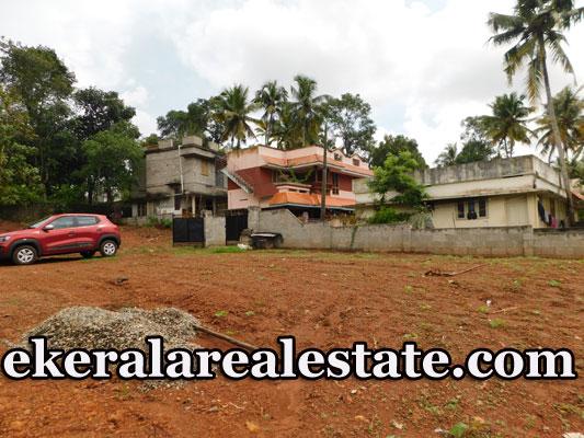 Below-5-lakhs-per-cent-land-sale-in-Peyad-Pallimukku