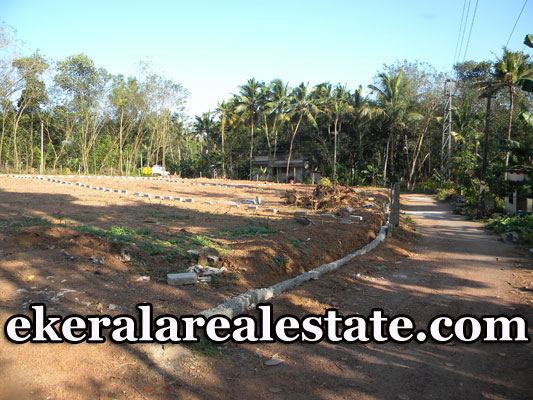 Cheap-rate-8-cents-plot-sale-at-Venjaramoodu