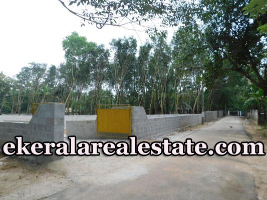 Residential-plot-sale-in-Chempakamangalam-Thonnakkal