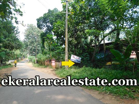 Vavarambalam-Pothencode-residential-plot-for-sale