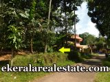 Tholicode-Nedumangad-28-cent-low-price-plot-for-sale