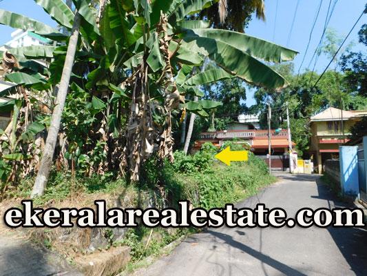 House-plot-sale-in-Kuravankonam-–-Vayalikada-Road