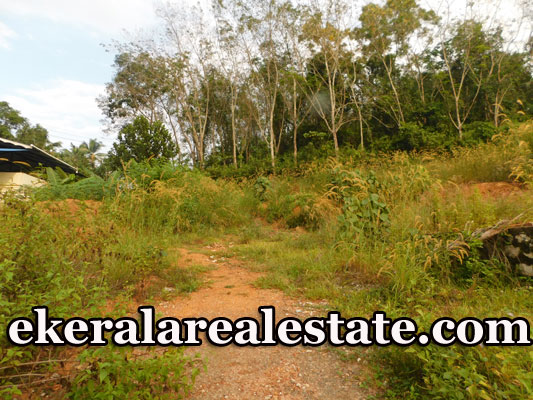 Attingal-land-plot-for-sale-Price-Below-1.5-Lakhs-Per-Cent
