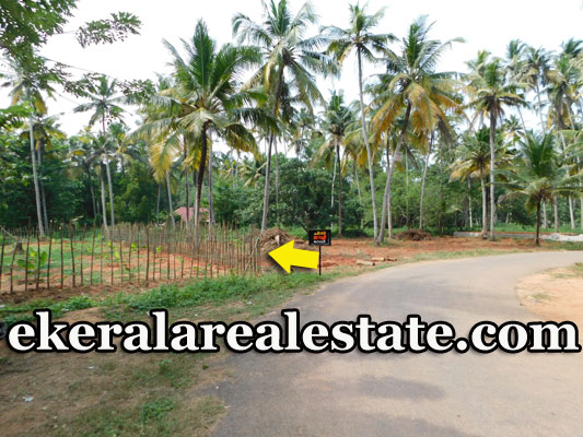 Low-budget-Land-With-Backwaters-For-Sale-at-Vennicode-Varkala