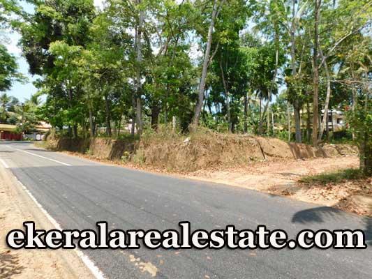 Low-budget-residential-plot-sale-in-Kattakada