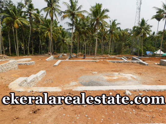 Sreekariyam-Kariyam-House-Plots-Sale-10-cents1