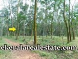Kattakada-46-Cents-Rubber-Land-for-sale-in-Trivandrum
