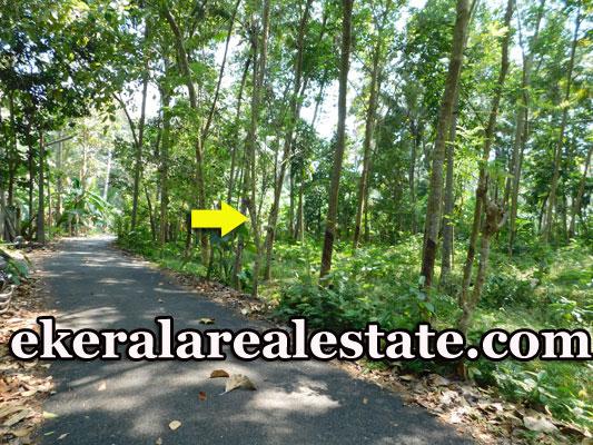 Pappanamcode land plot for sale below 4 lakhs per cent