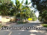 20 cents low price house plot sale in Pattathinkara Thonnakkal