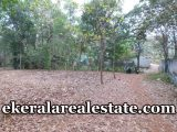 2-lakhs-per-cent-Residential-Land-sale-in-Kuttichal-Kattakada