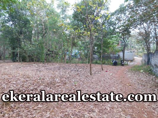 2-lakhs-per-cent-Residential-Land-sale-in-Kuttichal-Kattakada