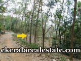 Below-1.5-Lakhs-Per-Cent-Land-Sale-at-Pappala-KilimanoorBelow-1.5-Lakhs-Per-Cent-Land-Sale-at-Pappala-Kilimanoor