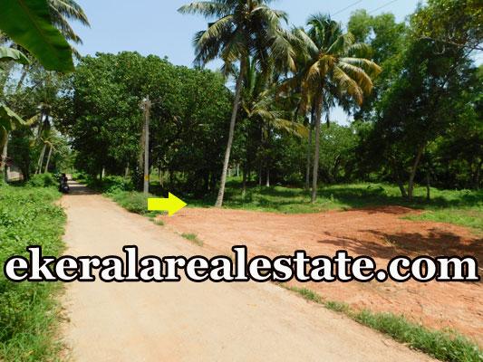 Cheap-rate-40-cents-land-plot-sale-in-Kadakkavoor