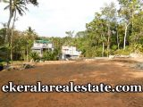 below-3-lakhs-per-cent-6-cents-lorry-plot-sale-in-Perukavu-Thirumala