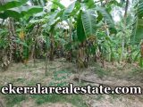 low-price-House-Plots-For-Sale-at-Enikkara-Peroorkada