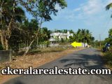 60-cents-low-budget-plot-sale-near-Mangalapuram-Technocity