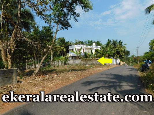 60-cents-low-budget-plot-sale-near-Mangalapuram-Technocity