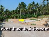 7-cents-lorry-access-Residential-Land-Sale-at-Chittazha-Vattappara