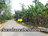 Nellanad-Venjaramoodu-Residential-House-37-cents-for-sale