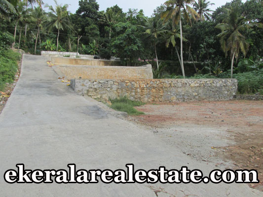 Residential-Plots-Sale-at-Mangalapuram-land-with-25-cents