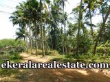 lorry-access-land-85-cents-sale-in-Amaravila-Neyyattinkara