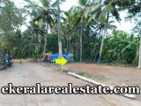 Urgent-sale-House-Plots-at-Mangattukadavu-below-5-lakhs-per-cent