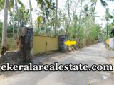 Erattakulangara-Murukkumpuzha-budget-villa-plot-for-sale